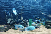 Jagdishchandra Bose Aquarium, Surat, India