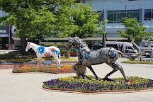 Seoul Racecourse Park, Gwacheon, South Korea