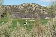 Sierra del Rio Golf Course, Elephant Butte, United States