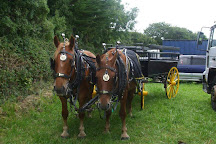 Shire Horse Farm and Carriage Museum, Redruth, United Kingdom