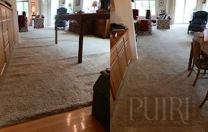 PUIRI Cleaning & Restoration