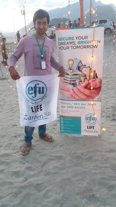 Efu Life Assurance Ltd. skardu