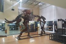 Museo Ecuatoriano de Ciencias Naturales, Quito, Ecuador