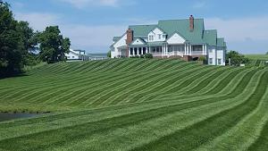 The Lawn & Sprinkler Guys