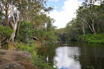 Lane Cove National Park, Macquarie Park, Australia