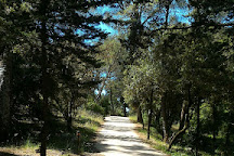 Bois de Montmaur, Montpellier, France