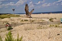 Gateway National Recreation, Sandy Hook, United States