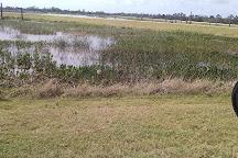 Ritch Grissom Memorial Wetlands, Melbourne, United States