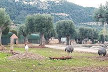 Zoosafari, Fasano, Italy