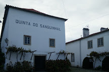 Quinta do Sanguinhal, Bombarral, Portugal