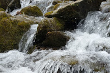 Dark Hollow Falls, Shenandoah National Park, United States