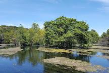 Landa Park, New Braunfels, United States