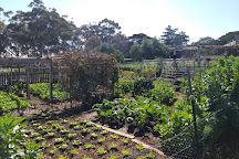Werribee Park Heritage Orchard & Farmyard, Werribee, Australia