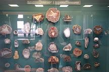 Natural History of Tatarstan Museum, Kazan, Russia