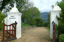 The Constantia Wine Tour, Constantia, South Africa