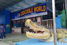 Teluk Sengat Crocodile Farm, Kota Tinggi, Malaysia