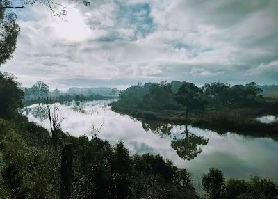 Cecil Hoskins Nature Reserve
