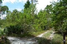 Turkey Creek Sanctuary, Palm Bay, United States