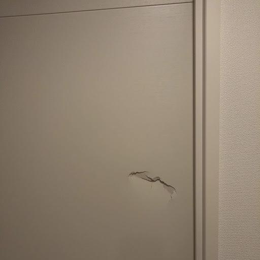 ドアの穴の補修に行ってきました!