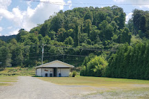 Old Cranks RV Campground, Galax, United States