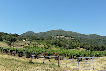 Butterfly Creek Winery & Vineyards, Mariposa, United States