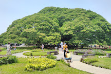Giant Rain Tree, Kanchanaburi, Thailand