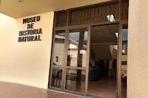 Museo de Historia Natural, Popayan, Colombia