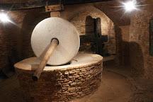Museo dell'Olio di Cantinarte, Bucchianico, Italy