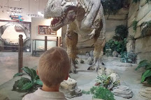 Fossil World Discovery Center Museum, Drumheller, Canada