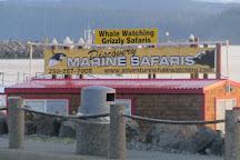 Discovery Marine Safaris LTD., Campbell River, Canada