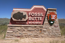 Fossil Butte National Monument, Kemmerer, United States