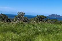 Djiru National Park, Wongaling Beach, Australia
