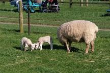 Glenroe Farm, Kilcoole, Ireland