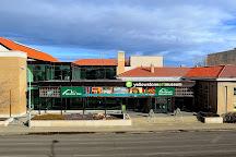 Yellowstone Art Museum, Billings, United States