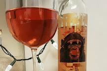 The Infinite Monkey Theorem Urban Winery, Denver, United States
