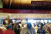 Lyman Orchards, Middlefield, United States