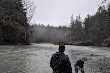 Chemainus River Provincial Park, Duncan, Canada