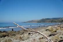El Capitan State Beach, California, United States
