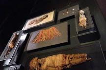 Museo Precolumbino de Chaguitillo, Sebaco, Nicaragua
