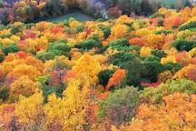 Talcott Mountain State Park, Simsbury, United States