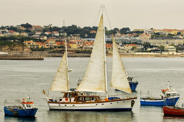 Halcyon I - Boat Tours Lisbon