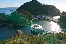 Shimoda Aquarium, Shimoda, Japan