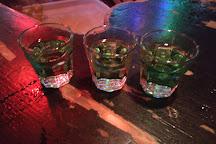 Drunken Monkey Prague Pub Crawl & Bar, Prague, Czech Republic