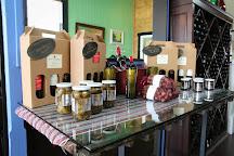 Scott Harvey Wines Tasting Room, Sutter Creek, United States