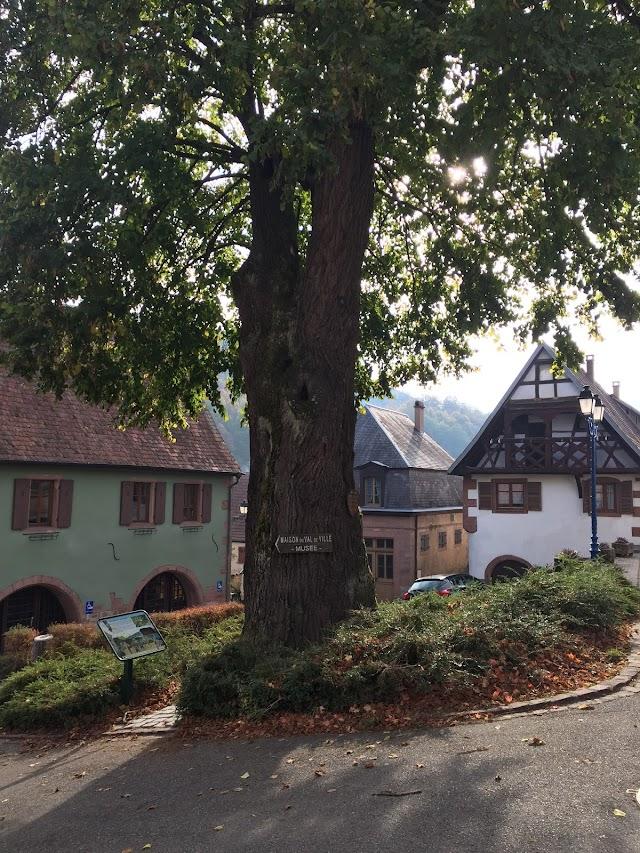 La Maison du Val de Ville