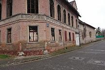 Maya Mare, Halle (Saale), Germany