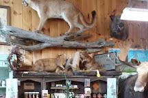 Moosehead Lake Indian Store at Kamp Kamp, Greenville, United States