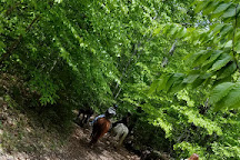 Bennett's Riding Stables, Lake Luzerne, United States