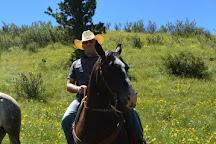 Bit-O-Wyo Ranch, Cheyenne, United States