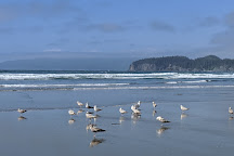 Shi Shi Beach, Clallam Bay, United States